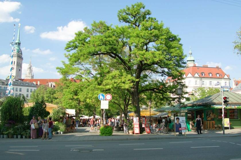 Viktualienmarkt Panorama Still Redline 1529