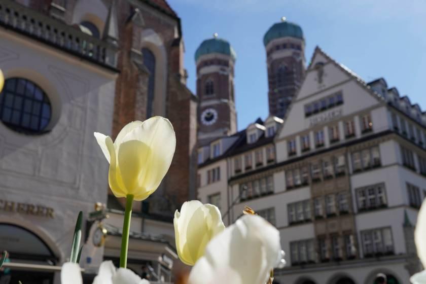 Frauenkirche  ALP4430