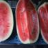 Sommer, Sonne und Wassermelone!