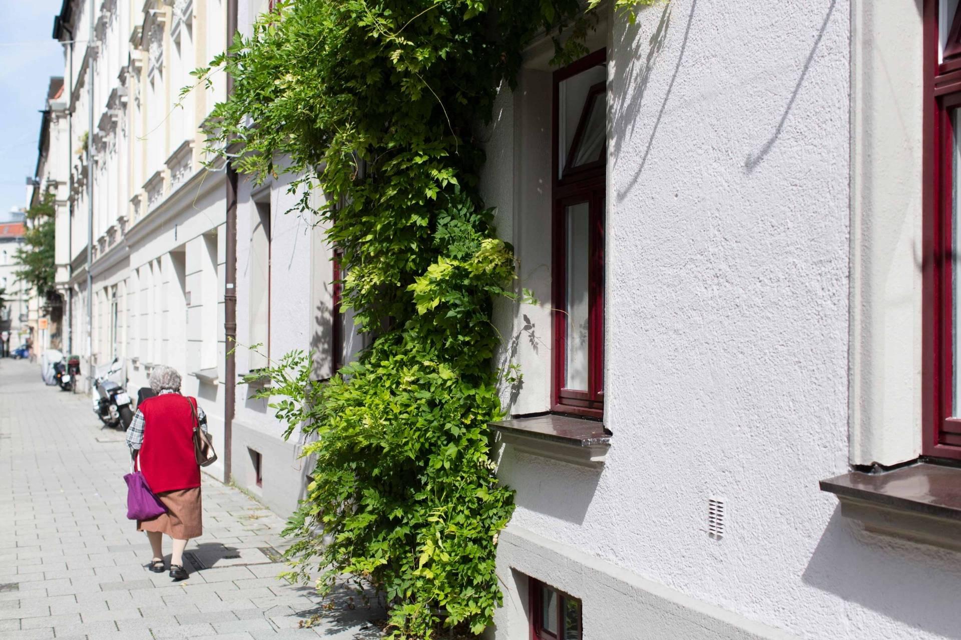 Spaziergang Im Idyllischen Haidhausen Die Sedanstrasse