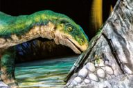 Dinosaurier, Plateosaurus