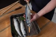Hält den Fisch normalerweise überm Grill, hier auf richtiger Höhe im Ofen: das Steckerl.