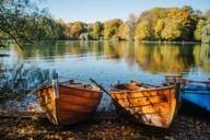 Zwei Ruderboote, angelegt am Uferrand vom Kleinhesseloher See.