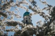 Dutzende Kirchen in München lassen einen in den Süden träumen –wie die neobarocke Sankt Joseph in der Maxvorstadt.