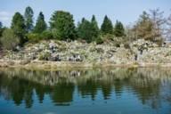 Rund 16.000 heimische und exotische Pflanzenarten wachsen in Münchens Botanischem Garten.