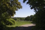 Der Luitpoldpark ist eine grüne Insel mitten in Schwabing.