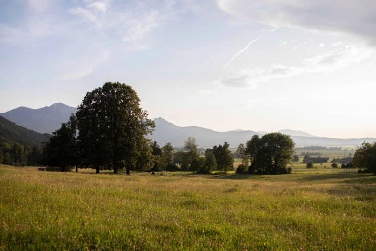Landschaft bei Kochel am See