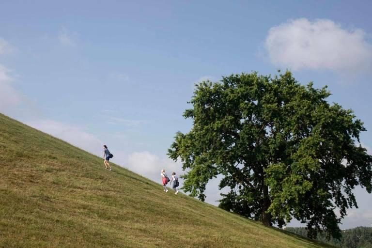 Drei Stadtwanderer steigen über grüne steile Sommerwiesen auf den Olympiaberg.